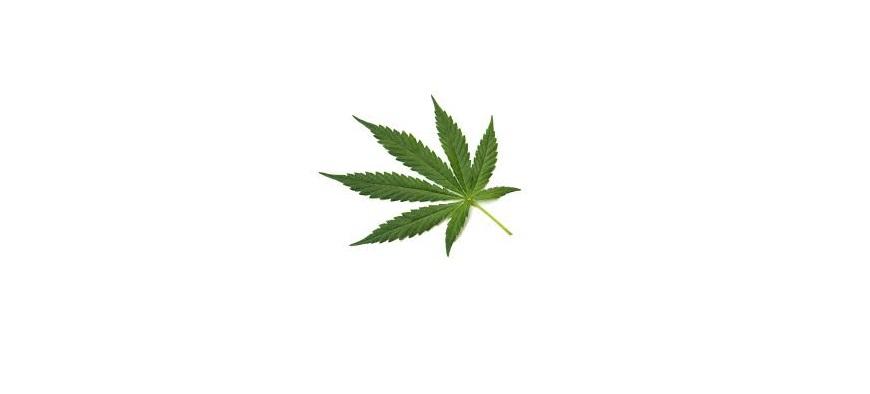 Marijuana-Pardons-1